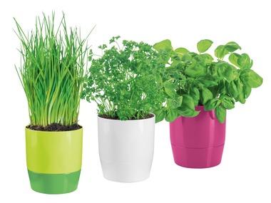 FLORABEST® Samozavlažovací květináč