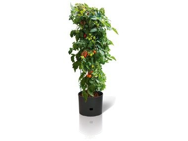 FLORABEST® Květináč na rajčata